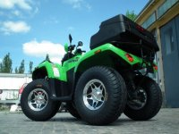 Arctic Cat 350 2x4